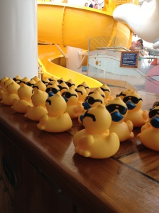 Rubber Duckies were purchased for $5 each.