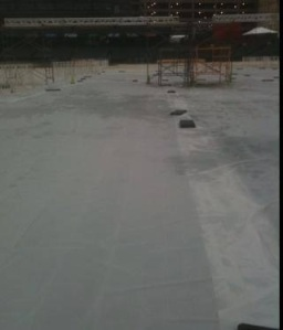 The finish line was a solid sheet of ice.  This photo was taken by a volunteer and posted on the Memphis Runners Track Club Facebook page.